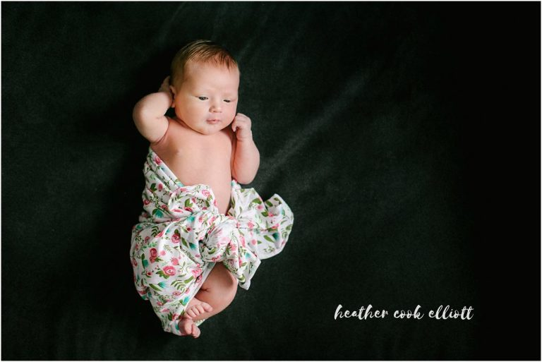 Modern wisconsin newborn photographer carolyn cecile at home