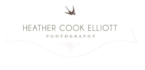Heather Cook Elliott logo
